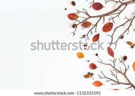 Autumn composition. Frame made of autumn dried leaves on white background. Flat lay, top view, copy space #1132332392