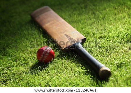 Cricket bat and ball on green grass of cricket pitch #113240461