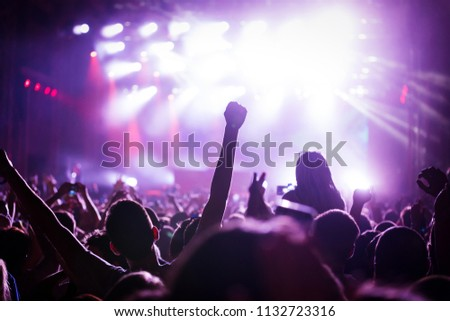 Picture of party people at music festival #1132723316