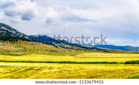 Ranch Land in the Nicola Valley along Highway 5A between Merritt and Kamloops, British Columbia, Canada #1133679455