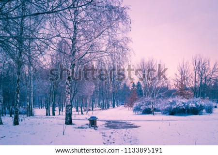 Winter nature landscape in park at sunset #1133895191