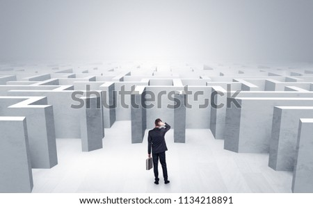 Businessman choosing between entrances in a middle of a maze #1134218891