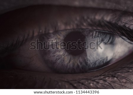 macro photo of the eye. close-up. atmospheric photo. beautiful view. eyes in detail #1134443396