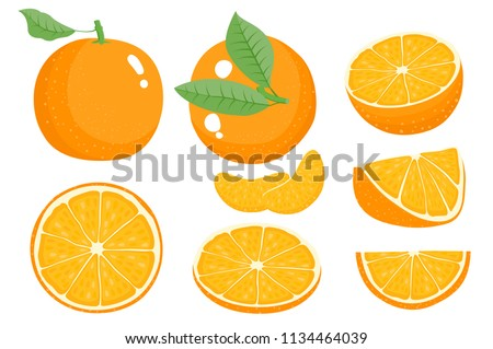 Bright vector set of colorful half. Fresh orange fruits. Vector illustration of juicy citrus oranges with half and slice for summer breakfast isolated on white background #1134464039