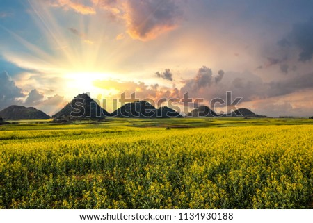 China LuoPing Rape flower sea Sunrise Photographed in March 2018 #1134930188