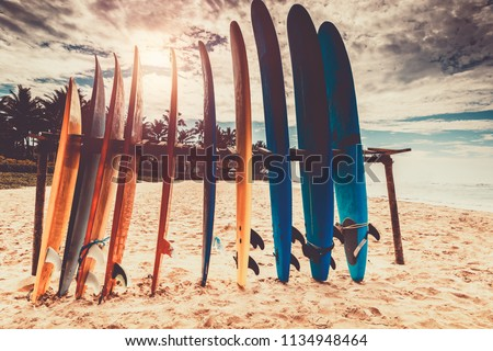Surfboards, many different surf boards on the beach, water sport, happy active summer vacation Royalty-Free Stock Photo #1134948464