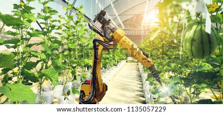 Artificial intelligence. Pollinate of fruits and vegetables with robot. Detection spray chemical. Leaf analysis and oliar fertilization. Agriculture farming technology concept. #1135057229