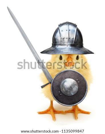 Crazy yellow chick medieval knight with helmet shield and sword funny baby animal joke poster #1135099847