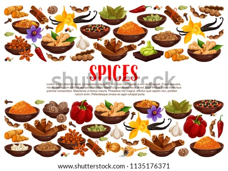 Fragrant spices and condiments from India. Ginger and cinnamon, bay leaves and vanilla, anise star and hot chilli pepper. Piquant curry and nut meg, garlic and saffron, wasabi sauce vector #1135176371