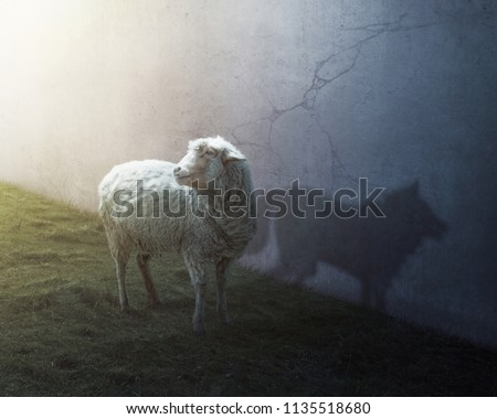 A sheep with the shadow of a wolf Royalty-Free Stock Photo #1135518680