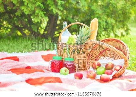 picnic basket, fruit, juice in small bottles, apples, milk, pineapple summer, rest, plaid, grass Copy space #1135570673