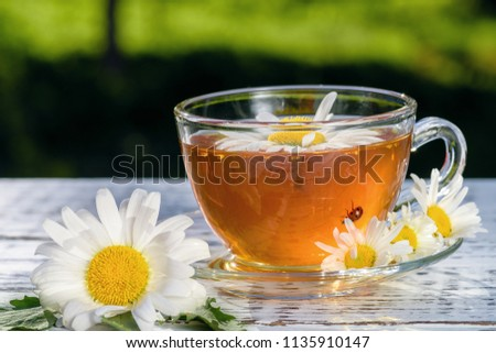 A cup of tea and a saucer, standing on a wooden table, outdoors, with flowers of white daisies, in the rays of sunlight. #1135910147