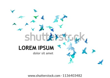 A flock of picturesque flying birds. Vector