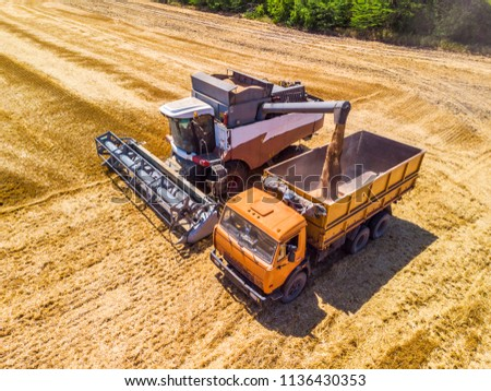 Combine harvester harvest wheat on the field. Loading in a truck. Aerial view. #1136430353
