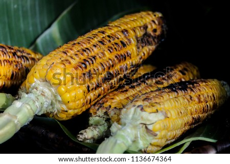 The roased corn in the process of ripening #1136674364