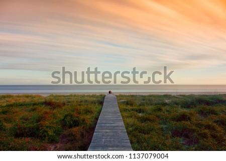 Ocean view with path to ocean. Hilton Head South Carolina #1137079004