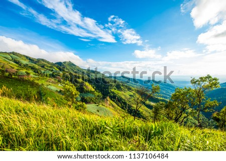 The mountains in the afternoon, with grass and sky with clouds drifting. #1137106484