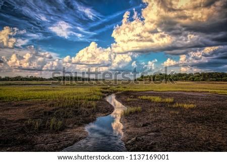 Low country scene on Hilton Head Island South Carolina.  #1137169001