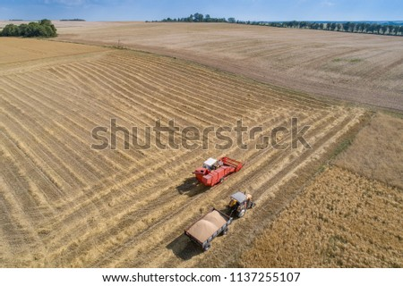 Aerial drone view of harvester combine working on field. Summer harvest. Farm works #1137255107