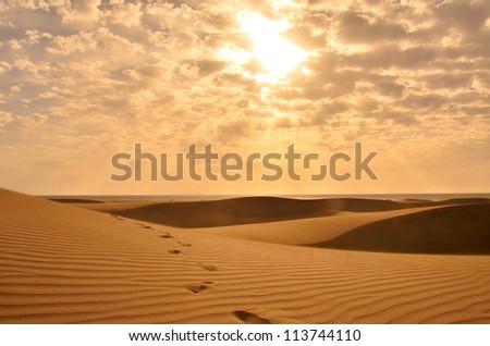Desert #113744110