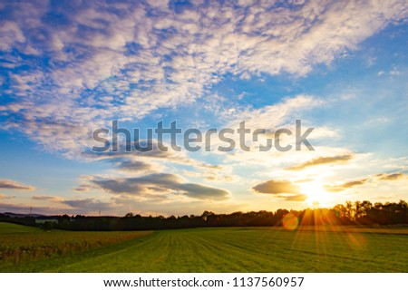 Bright blue sky with some clouds and the golden evening sun over green and flower fields and the forest at the horizon, Black Forest, South of Germany #1137560957