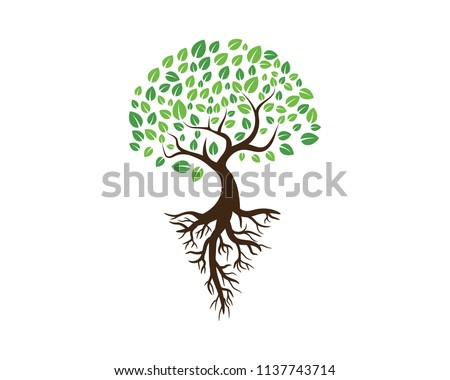 Logos of green Tree leaf ecology nature element vector #1137743714
