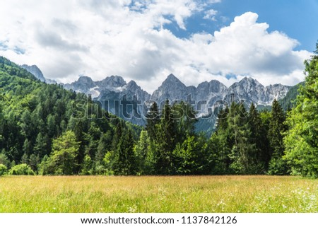 Green grass with green forest and rocky mountains in the background with dramatic clouds #1137842126