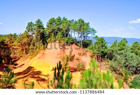 Karelia mountain forest pines landscape. Pine tree forest in Karelia. #1137886484