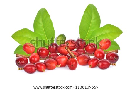 coffee beans on white background. #1138109669