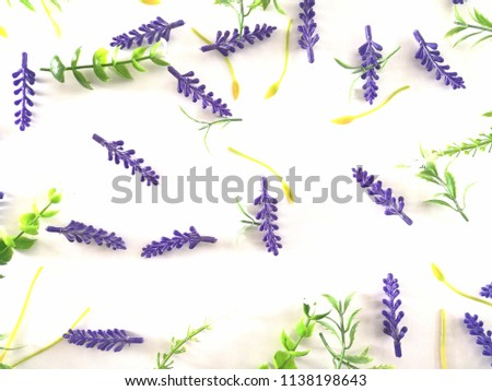 yellow and purple dry flowers, branches, leaves and petals pattern isolated on white background. flat lay, overhead view #1138198643