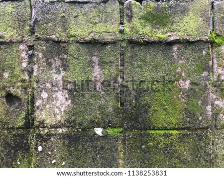Background of brick wall texture old wall moss #1138253831