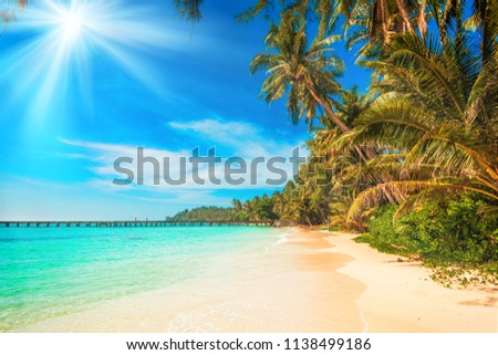 tropical beach.  sea and coconut palm.  Landscape of paradise tropical island beach #1138499186