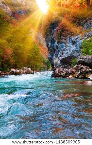 beauty nature scenery landscape background.  Nature composition.  Beautiful landscape #1138509905