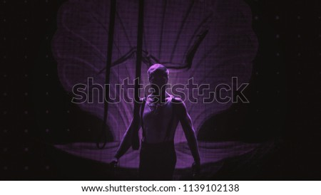 Artist on stage doing his aerial performance in theater #1139102138