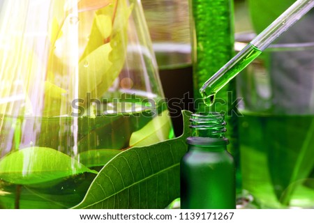 Scientist with natural drug research, Natural organic botany and scientific glassware, Alternative green herb medicine, Natural skin care beauty products, Research and development concept. #1139171267