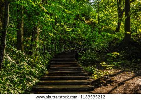 Road true Plitvice #1139595212
