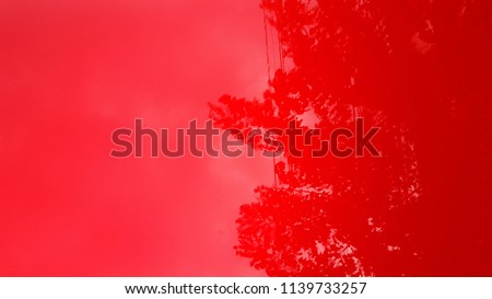 Red glossy surface background, metal red car surface, abstract texture #1139733257
