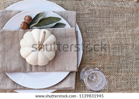 Thanksgiving Day or Halloween place setting with mini white pumpkins, Lamb's Ears leaves, and acorns over burlap table runner. #1139831945
