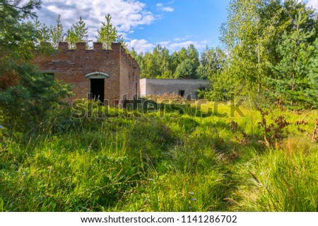 old houses on a forest glade in the middle of a thick forest #1141286702