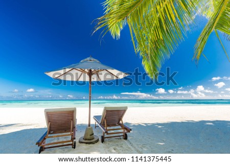 Tranquil beach scene. Exotic tropical beach landscape for background or wallpaper. Design of summer vacation holiday concept. Luxury tourism and travel destination design #1141375445