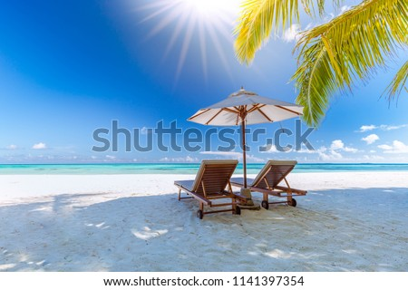 Amazing tropical landscape- Summer scene with lounge chairs and palm trees on white sandy beach background with sea view #1141397354