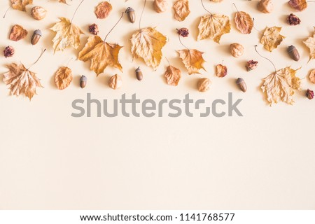 Autumn composition. Frame made of dried flowers and leaves on pastel beige background. Autumn, fall concept. Flat lay, top view, copy space #1141768577