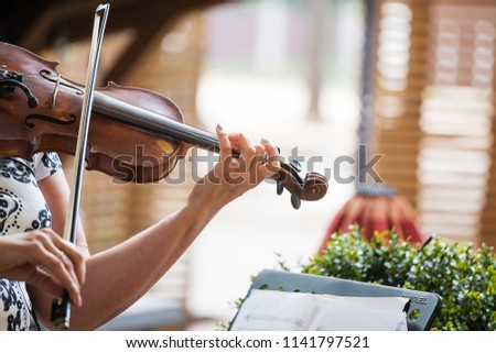 the girl plays classical music on the violin, nice sounds are produced by the hands of a professional musician  #1141797521