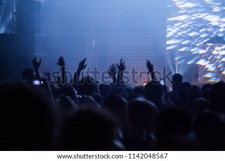 Cheering crowd at concert - summer music festival #1142048567