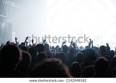 Cheering crowd at concert - summer music festival #1142048582