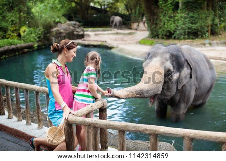 Family feeding elephant in zoo. Mother and child feed Asian elephants in tropical safari park during summer vacation in Singapore. Kids watch animals. Little girl giving fruit to wild animal.  #1142314859