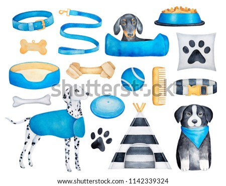 Collection of different dog breeds (dachshund, dalmatian, border collie) and doggy objects. Must have things what to buy for new puppy. Hand painted water color drawings, cut out clip art elements.