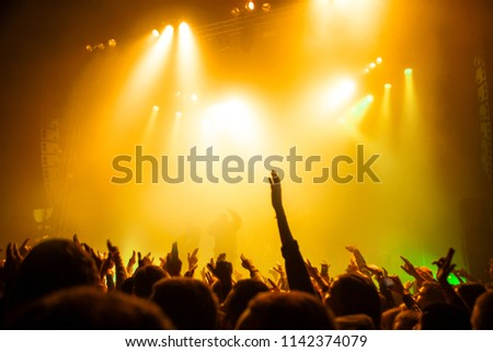 Musical concert. People in the concert hall at the disco . Singer in front of the audience. Fans at the concert. Blurred image / blurred photo.  #1142374079