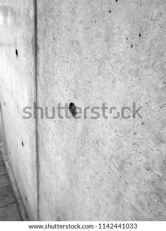 fair faced concrete. white texture, cement background #1142441033