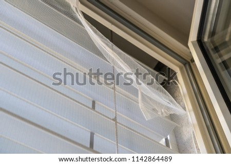 Instal Insect protection net on window #1142864489